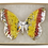 Thumbnail: Whimsy Butterfly Brooch I