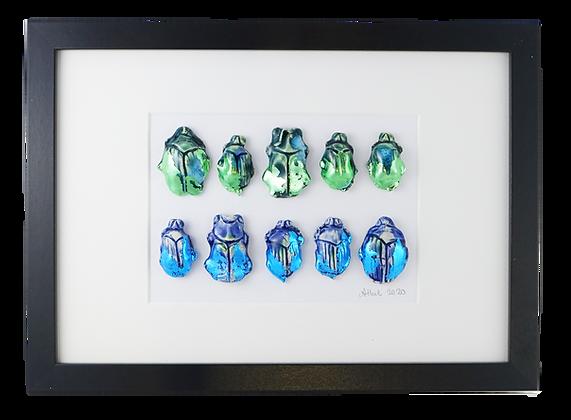 Beetle Collection II