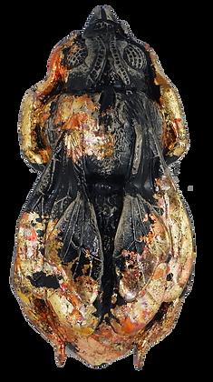 Fiery Queen Bee
