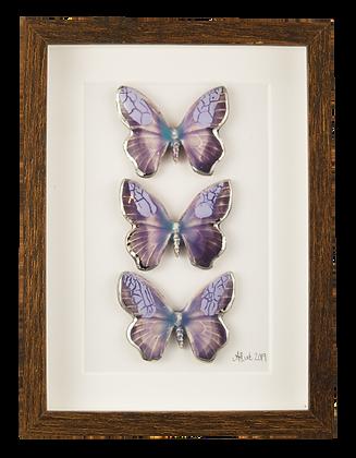 Silver Nova Butterfly Trio