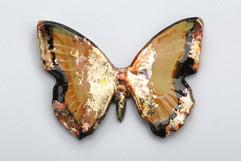 Comet Glazed Butterfly.jpg