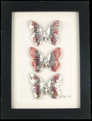 Sugar Stardust Butterfly Trio