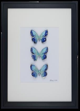 Calm Blue Butterflies