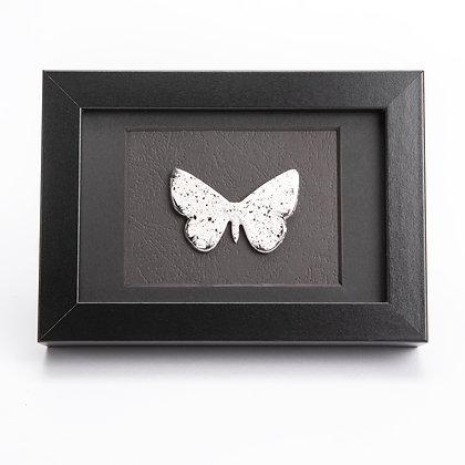 Small Framed Speckled Moth