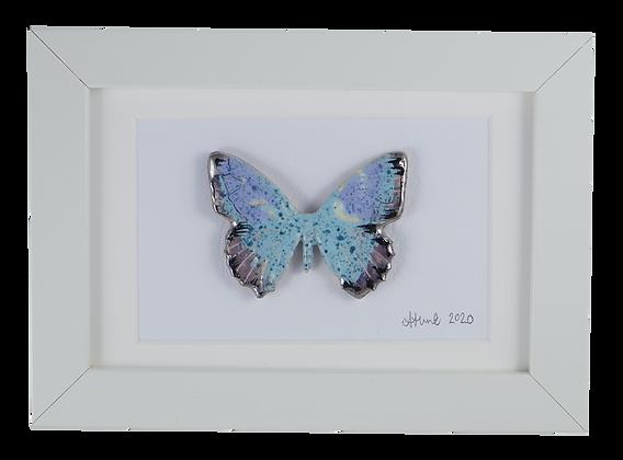 Lucid Lockdown butterfly