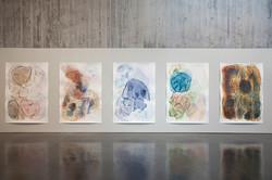 New Art Gallery Walsall 2017