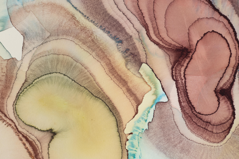 Shock Metamorphosis Detail