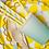 Thumbnail: Vasos Color Degradé