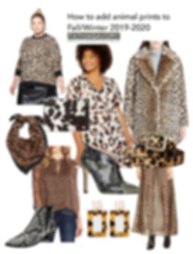 animal print shopping guide 2019-20 copy
