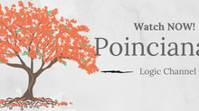 All things Poinciana 2017