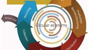 CRM Alliance contributes to Circular Economy Action Plan Roadmap