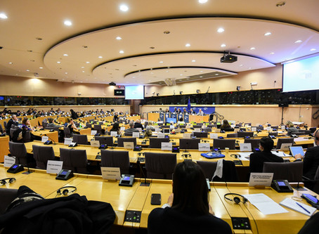 Committees Give Final Opinions on EU-UK Recommendations