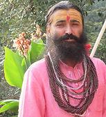 Himalayan Yogi