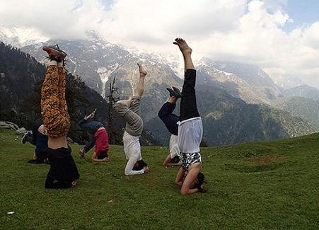 200 Hour Yoga Teacher Training Dharamsala India