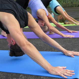 Best Yoga Teacher Training india.JPG
