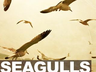 New Music: Dane Lawrence - Seagulls feat. Nyemiah Supreme