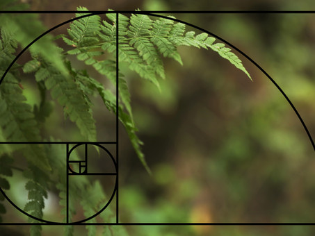 Why do we use Fibonacci numbers for Relative Sizing?