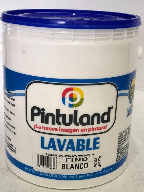 PINTULAND LAVABLE Vinilo Tipo 2