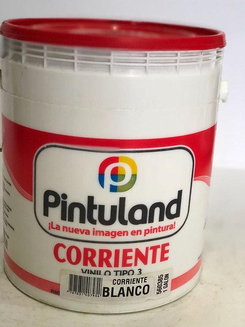 PINTULAND Corriente Vinilo Tipo 3