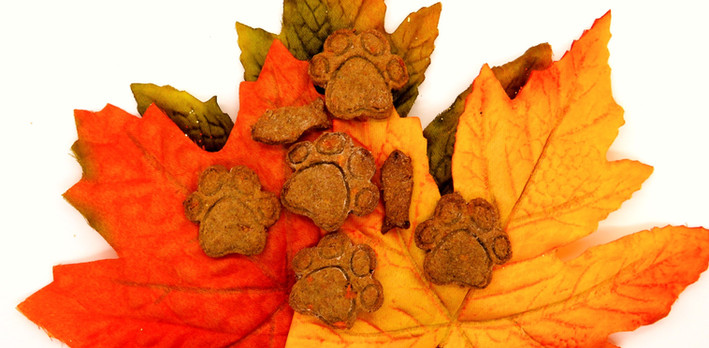 Turkey & Sweet Potato Treats