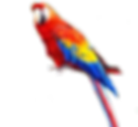 M_V Bay Breeze Logo