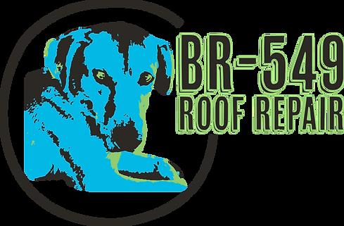 BR 549 Logo - Black Circle.png