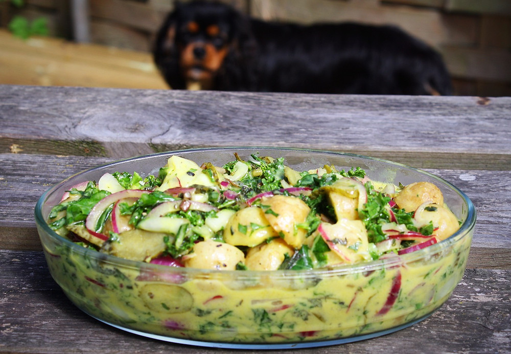 The Ultimate Potato Salad | Vegan and gluten free recipe | Potato salad | The Dopey vegan