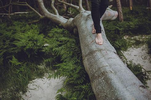Balance finden, Natur, Prävention, Gesundheit erhalten, Schmerzfrei sein.jpg