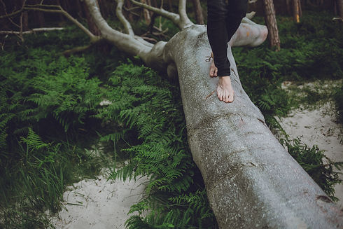 Balance finden.jpg
