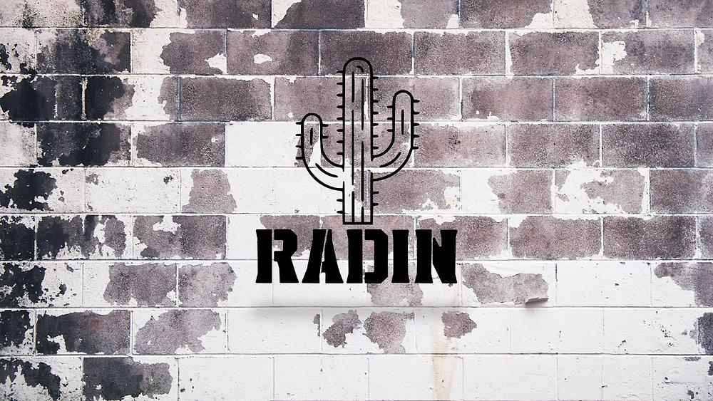 Radin Roofing Services Utah