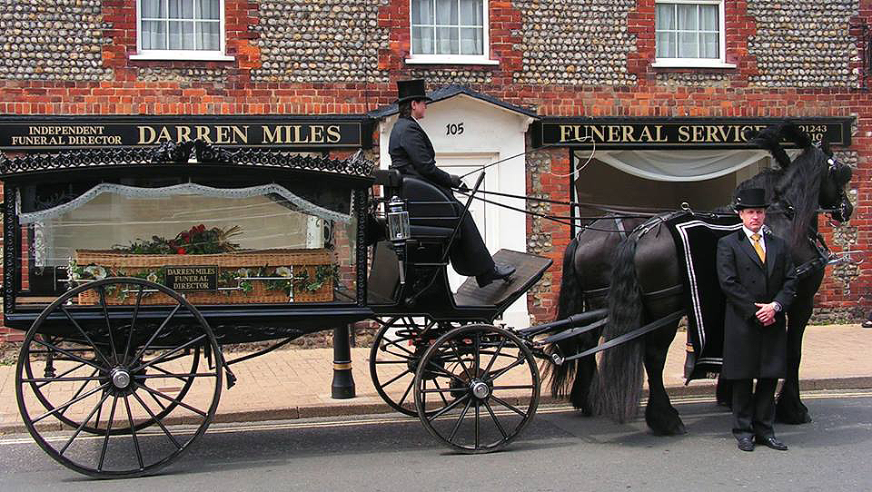 darrenmiles Horse and carriage .png