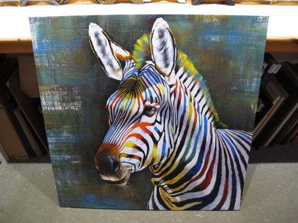 Colour Zebra.JPG.jpg