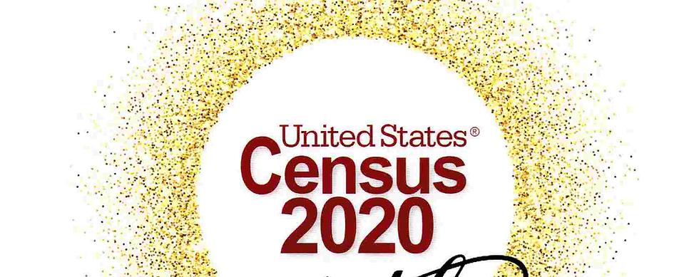 2020 Census Bureau_Crop.png