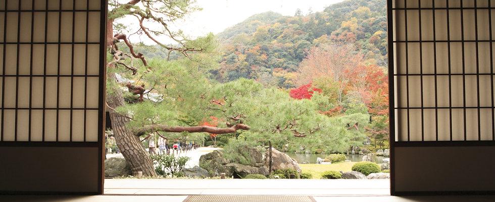 JapaneseDoors1.jpg