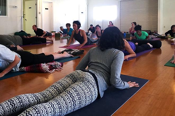 cobra-yoga-pose.jpg