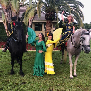 Flamenco Show in Homestead with Andalusian horses