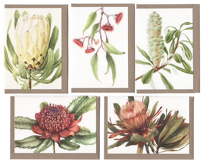 Natives Card Pack of 5