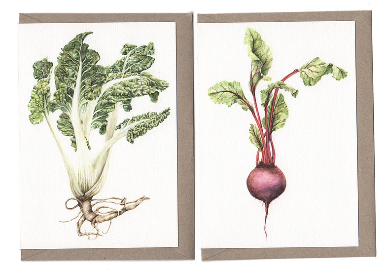 Vegetables Card Pack of 6