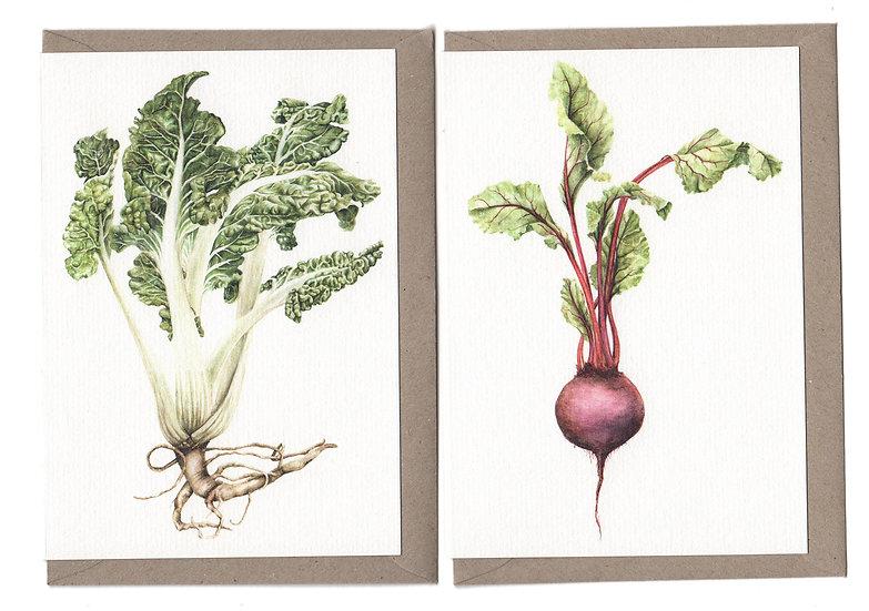 Vegetables Card Pack of 6
