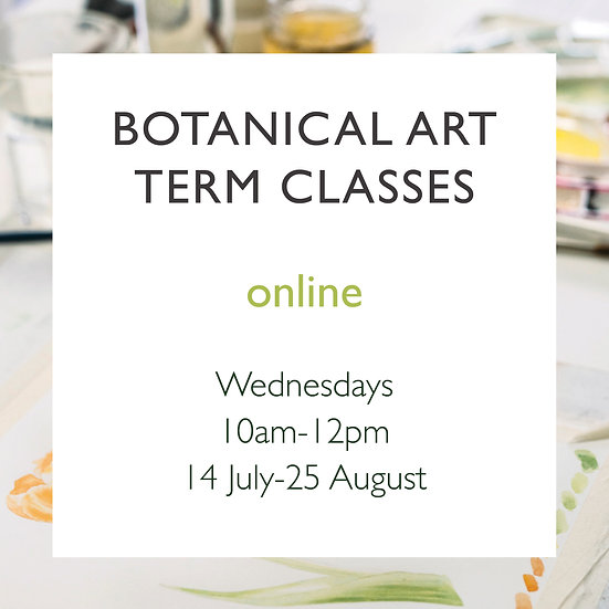 7 Week Online Term Classes - Wednesdays