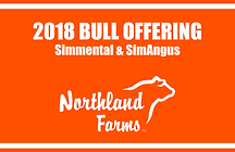 Northland Farms 2018 Bull Sale