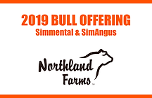 Northlad Farms 2019 Bull Sale