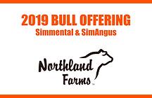 Northlad Farms 2019 Bull Sale