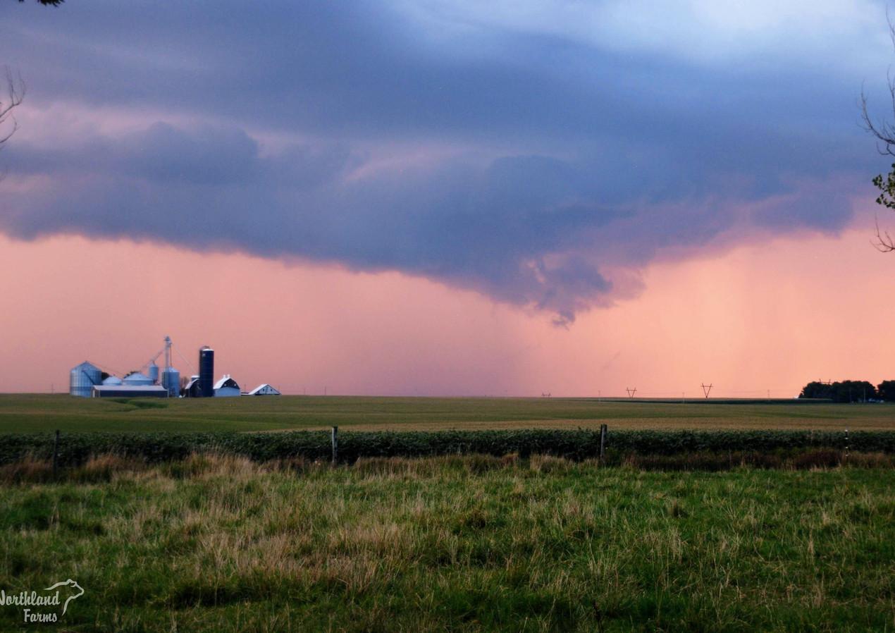 Farm Storm.jpg