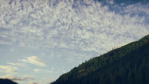 BeyondClimate_Hillside.jpg