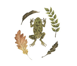 Frog Wreath