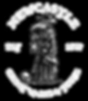 LOGO 2019 NEWCASTLE TRANS.png