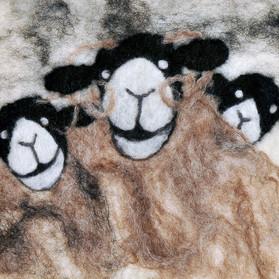 Sheep Selfie 2