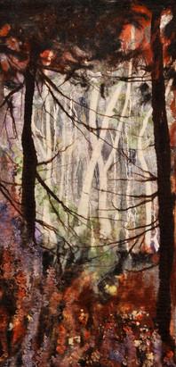 Sherwood Forest Winter