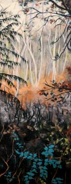 Sherwood Forest Autumn